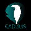 Cadulis
