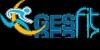 Gesfit